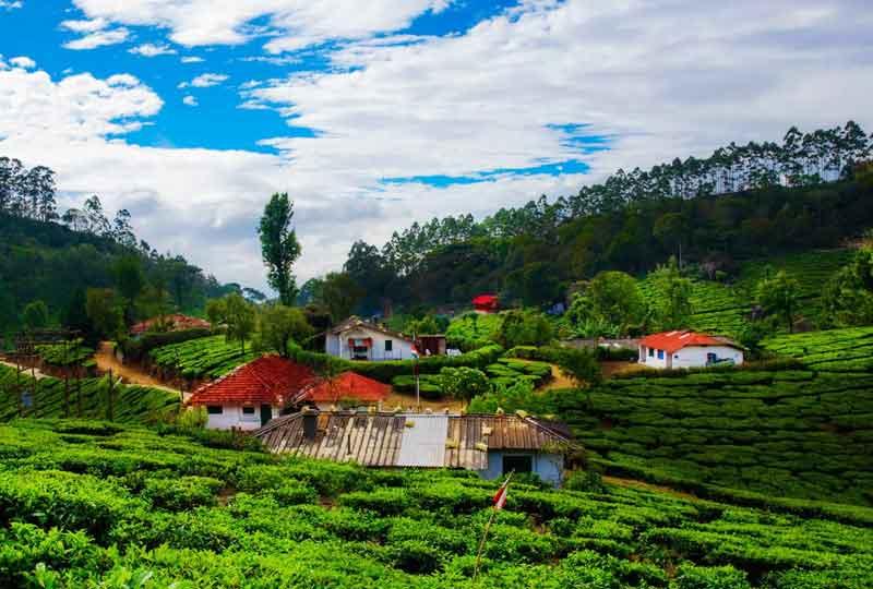 vagamon - Honeymoon Places for Couples in Kerala
